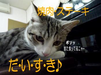 純二@なぁちゃんなぁちゃん1