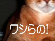 げんご@なぁちゃんなぁちゃん4