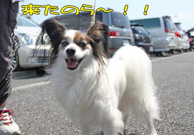 hitachi100424_005