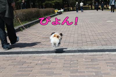 hitachi100424_009