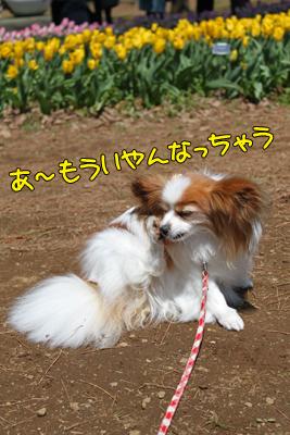 hitachi100424_023