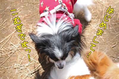 hitachi100424_028