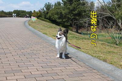 hitachi100424_033