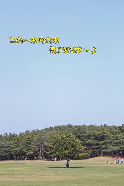 hitachi100424_047
