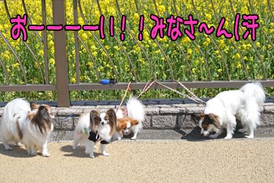 hitachi100424_048