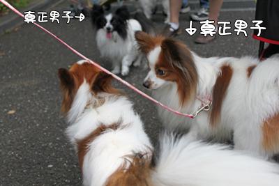 johoku_park_001