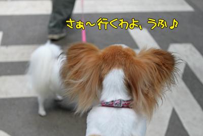 johoku_park_006