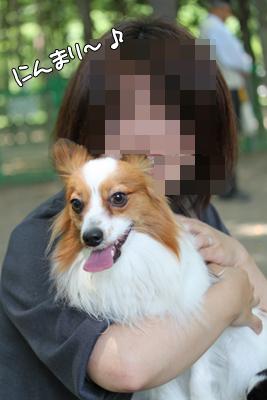 johoku_park_011