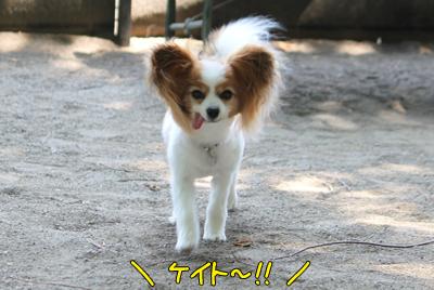 johoku_park_021