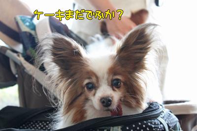johoku_park_082