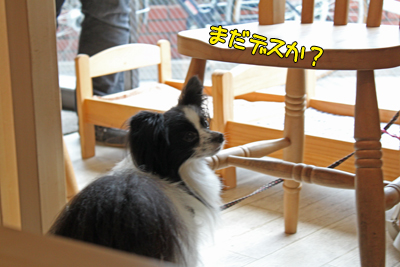 johoku_park_083