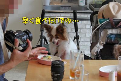 johoku_park_094