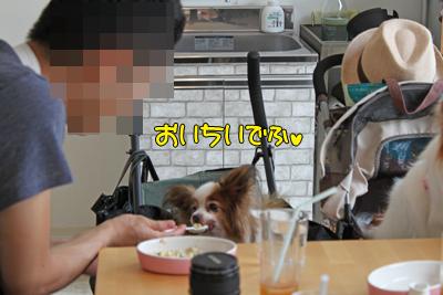 johoku_park_099