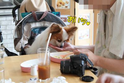 johoku_park_101