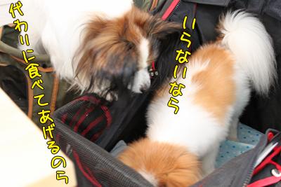 johoku_park_104