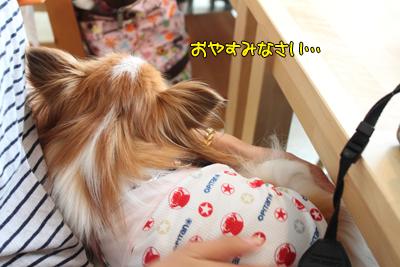 johoku_park_107