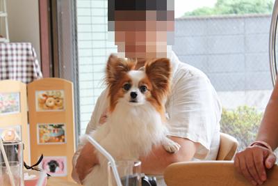 johoku_park_108
