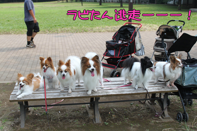 johoku_park_125