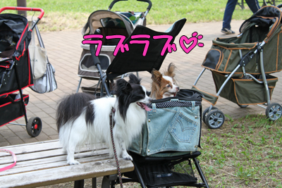 johoku_park_126