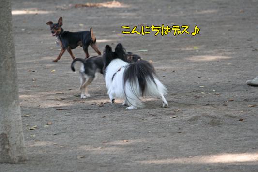 johoku_park_129