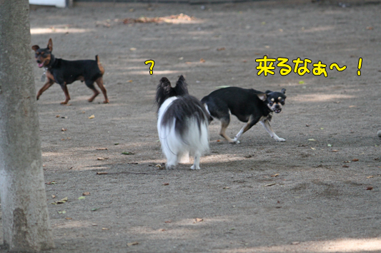 johoku_park_130