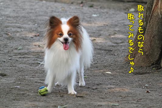 johoku_park_132