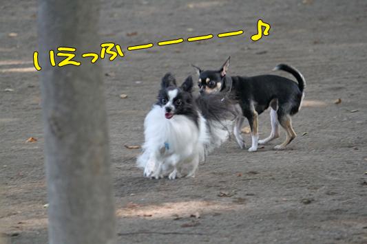 johoku_park_134