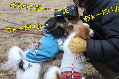kashiwa_100211_026