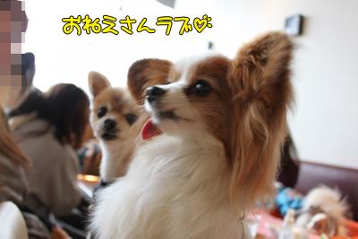 kashiwa_100211_049