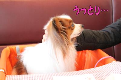 kashiwa_100211_062