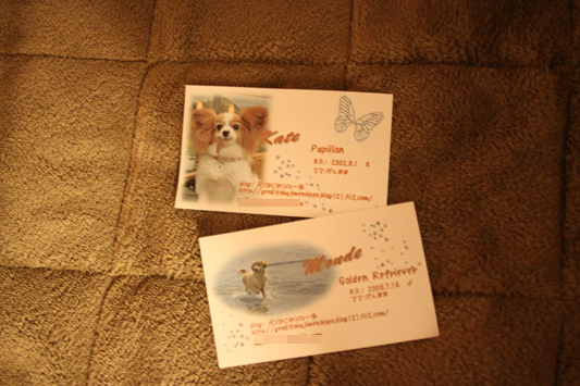 namecard_002