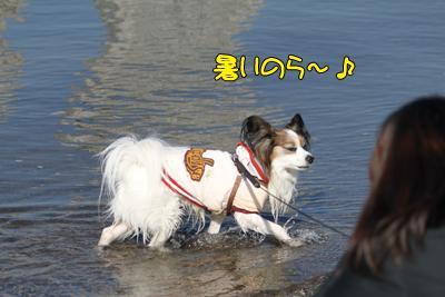 odaiba100130_035
