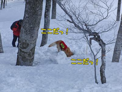 tanigawa_040