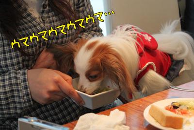 toyosu100306_052
