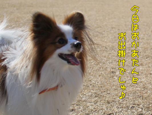 toyosu110122_001