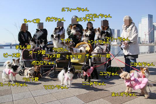 toyosu110122_028_3