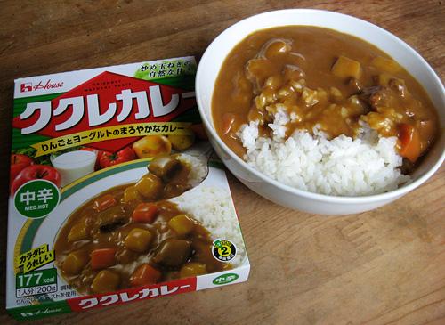 2010-06-07 昼食