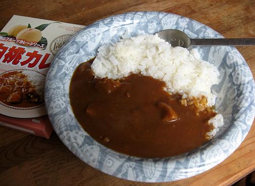 2010-06-10昼食2
