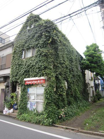 緑の古本屋さん