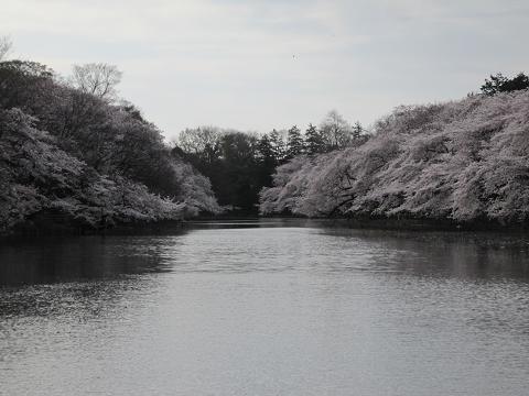 七井橋より
