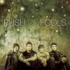 Rush Of Foolsbg