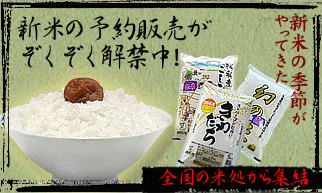 090902_rice322.jpg