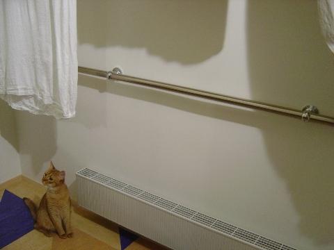 上に行ってみたいのよっ(2008.07.21)