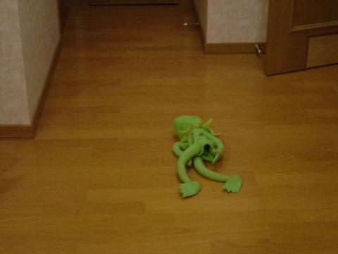 寝室前で行き倒れ(2008.08.21)