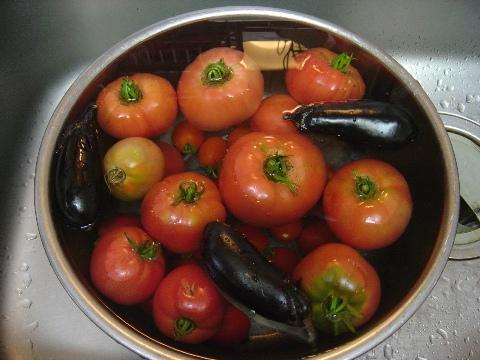 今週の収穫(2008.08.24)