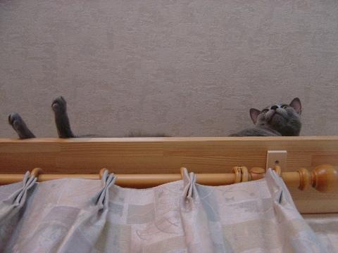 下から見ると...(2008.09.04)