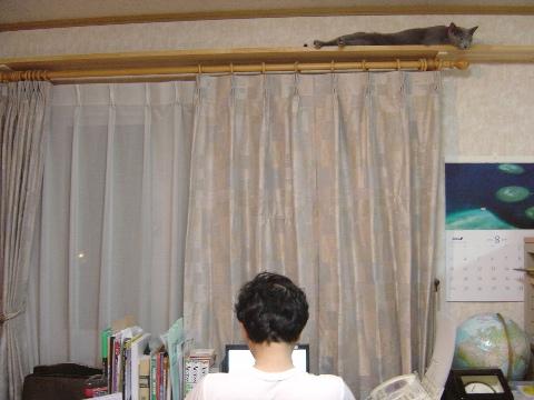 こんなところ(2008.09.04)