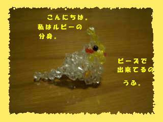 CIMG04050000.jpg