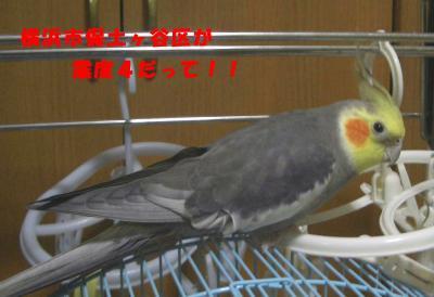 CIMG0793456.jpg