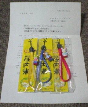 NEC_0184.jpg